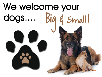 We accept Large and Small Dogs