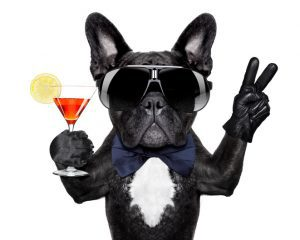 dog with martini cocktail and victory or peace fingers