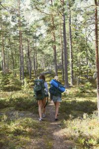 Women hiking in forest together