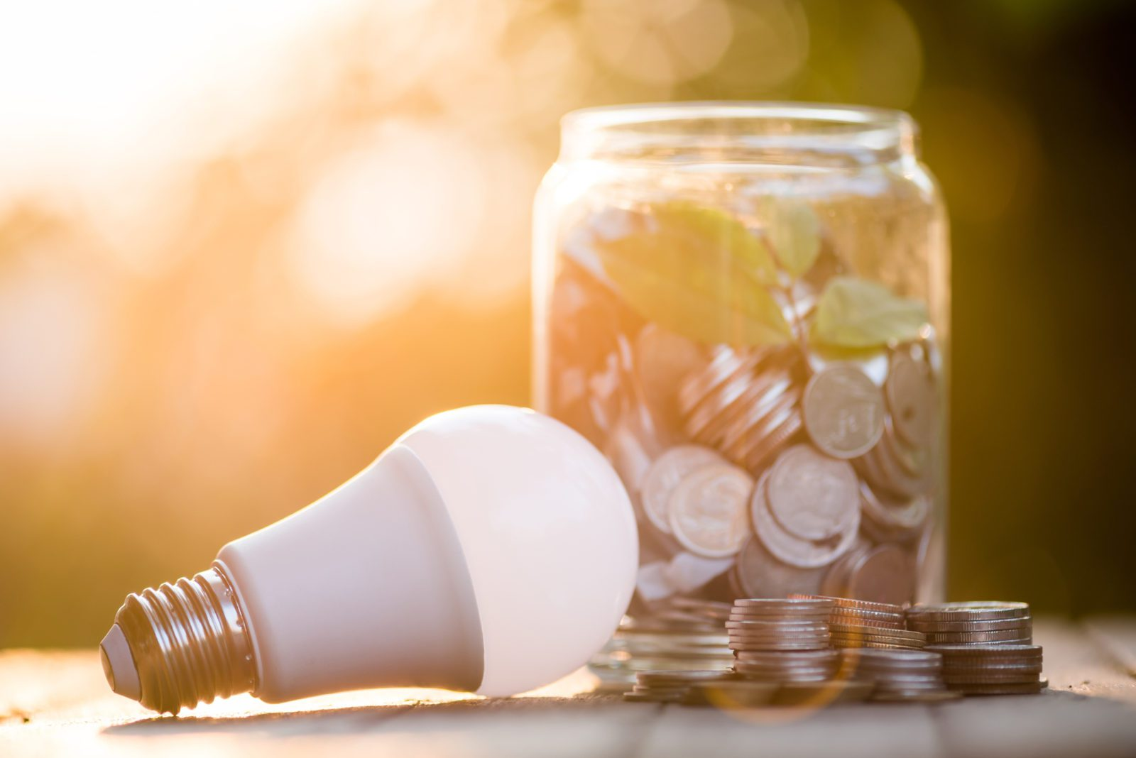 Energy Savings LED Bulb with a jar full of change