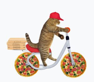 Cat rides a pizza bicycle