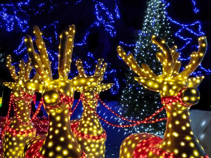 Christmas lights of reindeers - getty
